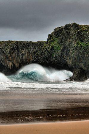 La marea. Libros Prohibidos