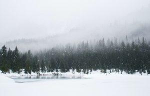 Más allá del invierno. Libros prohibidos